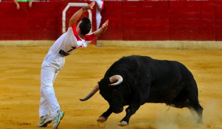 Un recortador muere al ser embestido por un toro en La Parrilla (Valladolid)